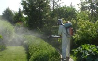 Обработка дачного участка от комаров, химия, лучшие средства
