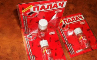 Палач от тараканов: инструкция по применению
