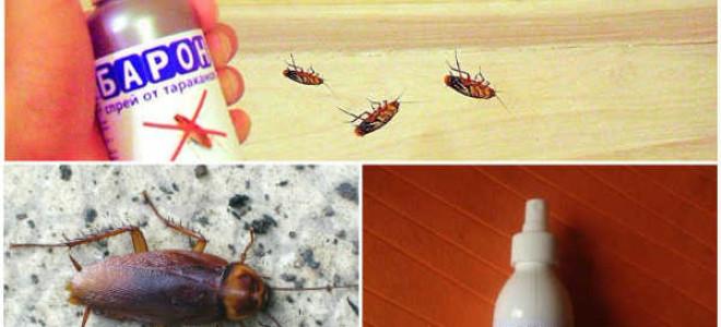 Спрей Барон от тараканов: применение, действие