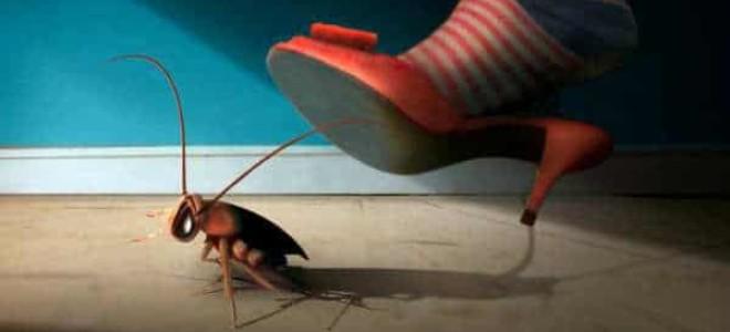 Что делать, если тараканы ползут от соседей