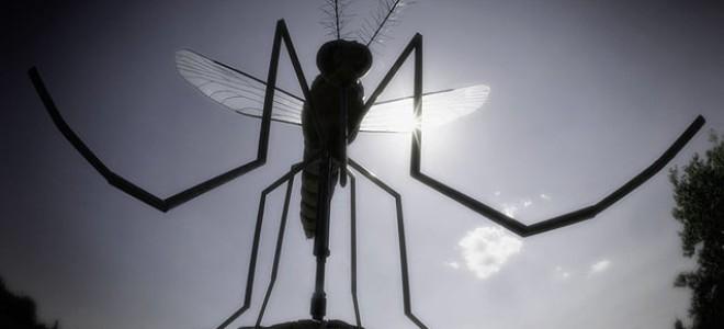 Наиболее эффективные средства от комаров