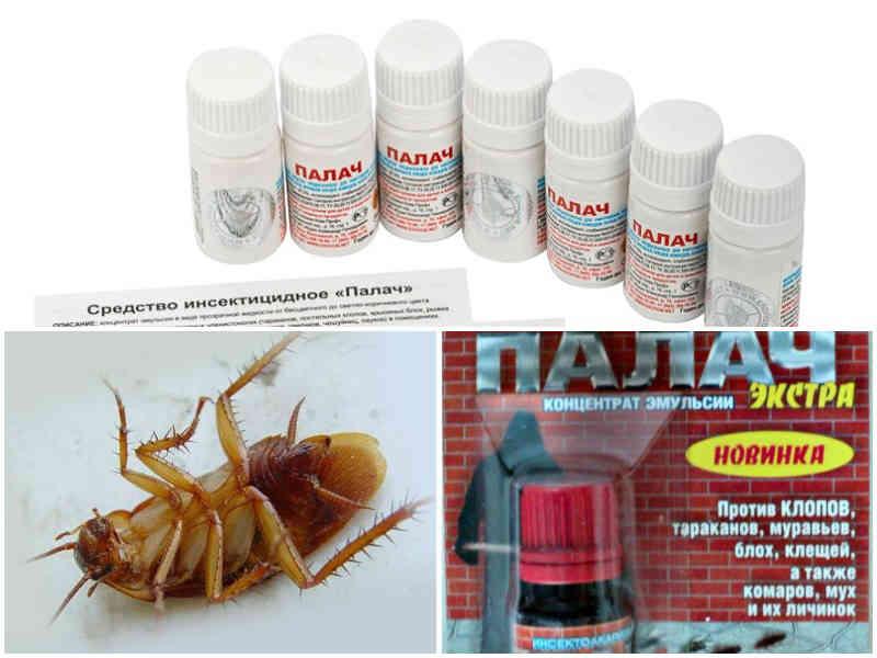 Палач средство от тараканов
