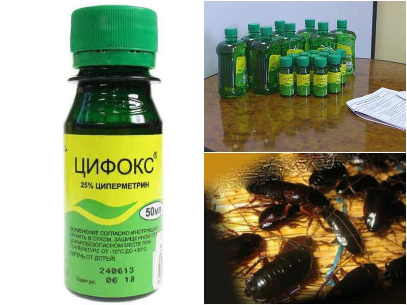 Цифокс от тараканов отзывы