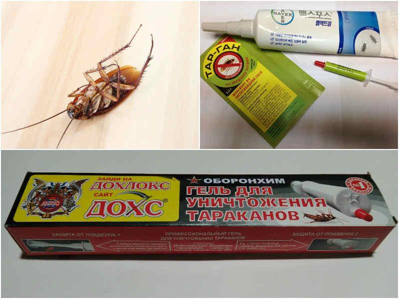 гель от тараканов все виды