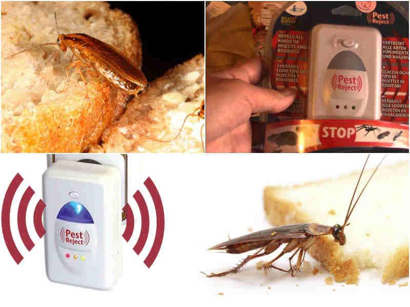 пест репеллер от тараканов