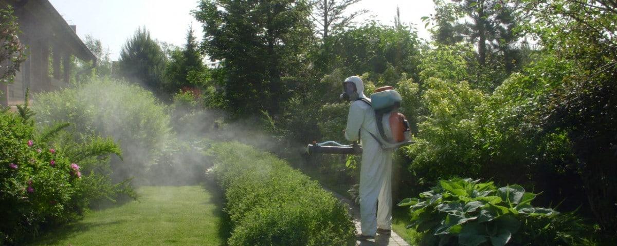 Как избавиться от комаров на большой территории