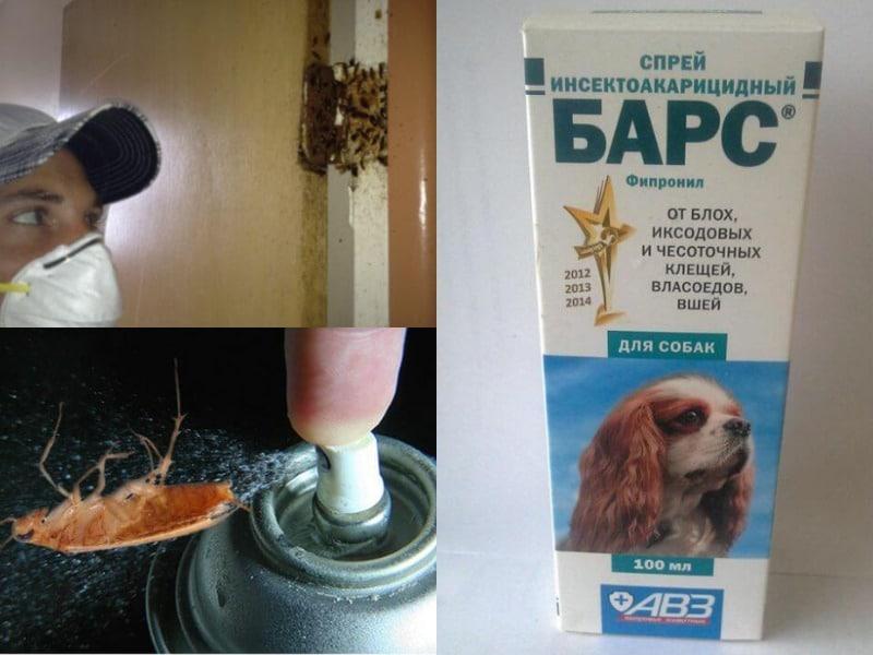 барс от тараканов правила применения