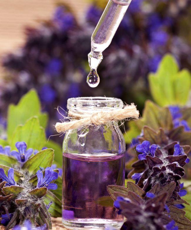 эфирные масла и экстракты от моли