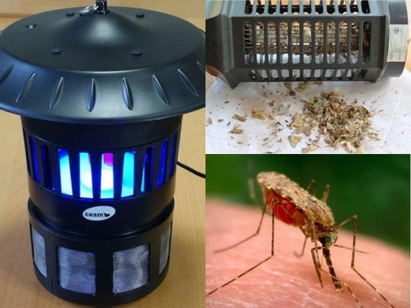 лампа от комаров инсектицидная