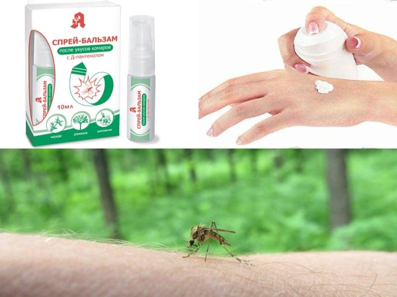 ледум от комаров правила обработки