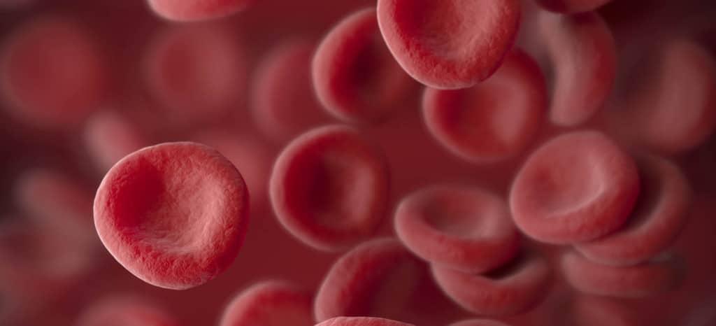 малярийный комар передает инфекцию