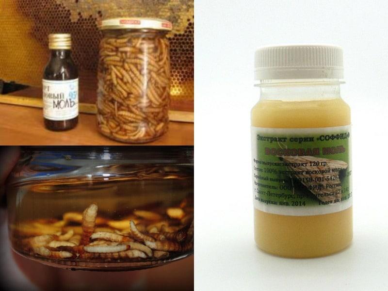 мазь и настойка из личинок пчелиной моли