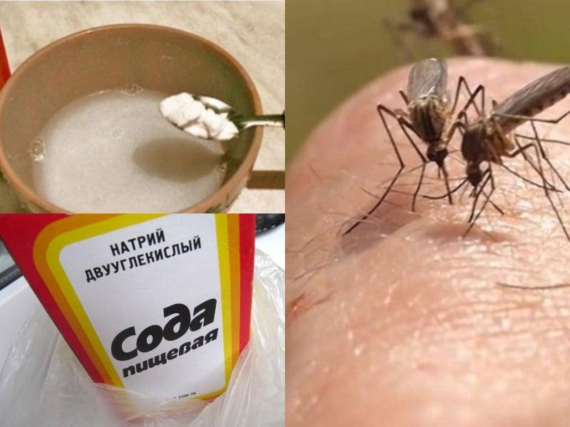 укусил комар в глаз ребенка народные средства